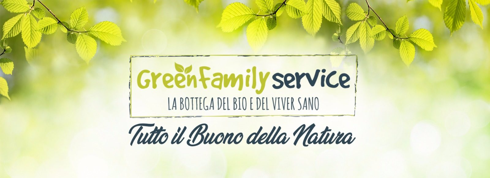 Green Family Service Blog